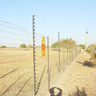 electric_fence_81